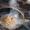 Teahouse in Kokand, dietary meals in kokand - Изображение #8, Объявление #610471