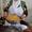 Гид в Коканде,  достопримечательности Коканда,  экскурсия по Коканду #827211